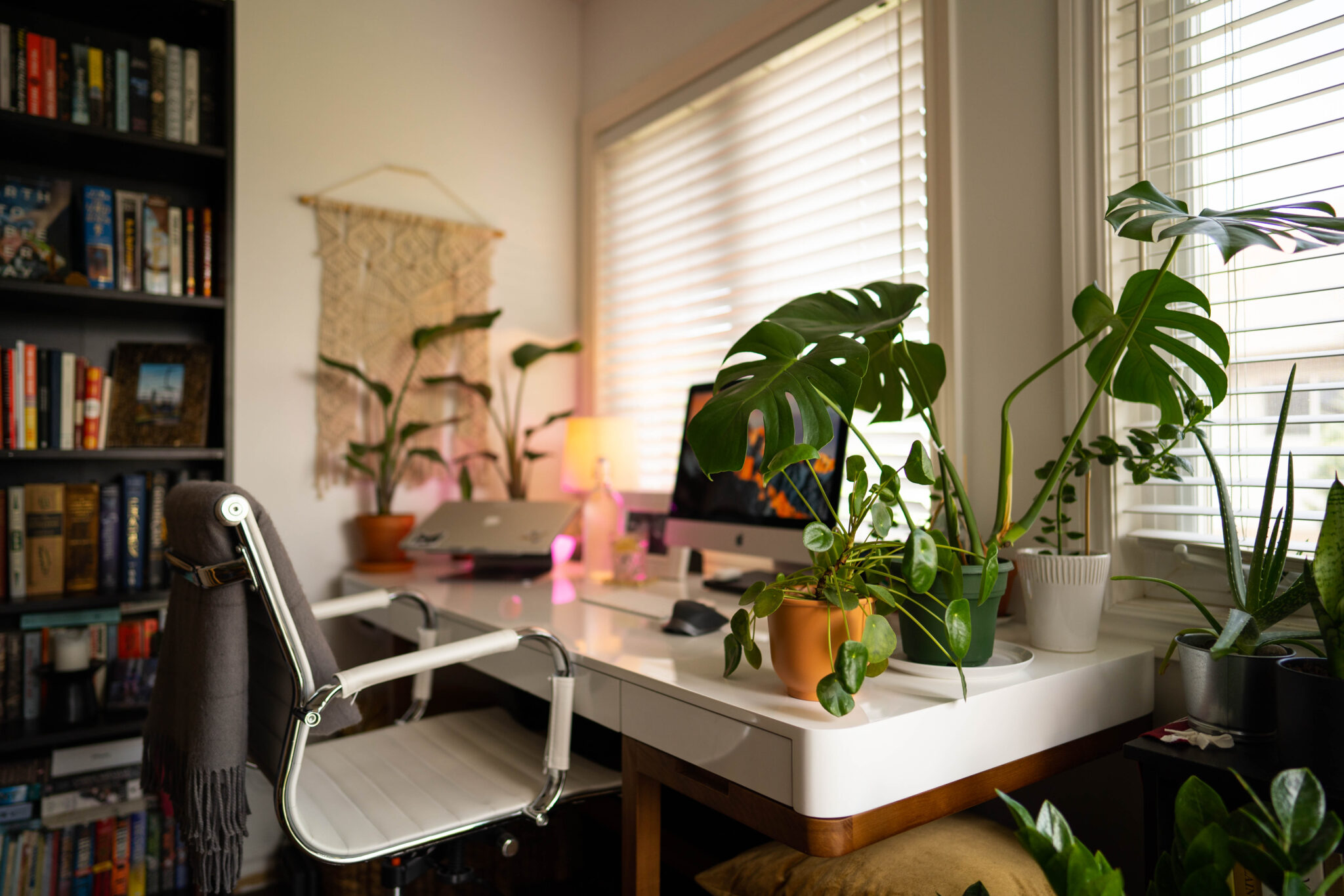 Minimal Clean Desk in the Daylight with Plants surrounding the edges and iMac